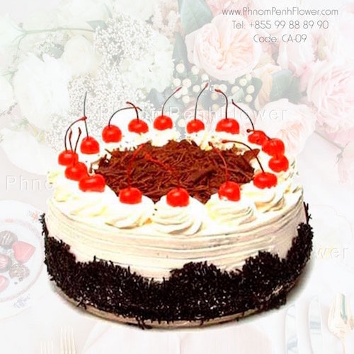 Chocolate with strawberry cake