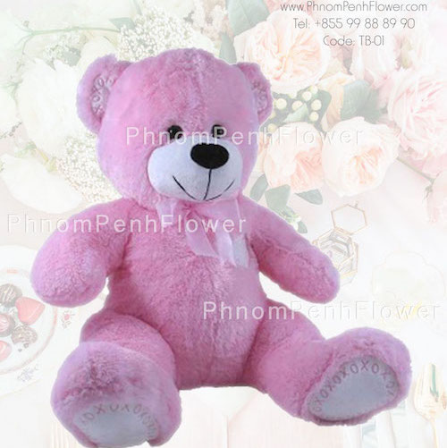 Big Teddy Bear Gift - Tb-01
