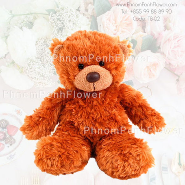 Big Teddy Bear Gift - Tb-02
