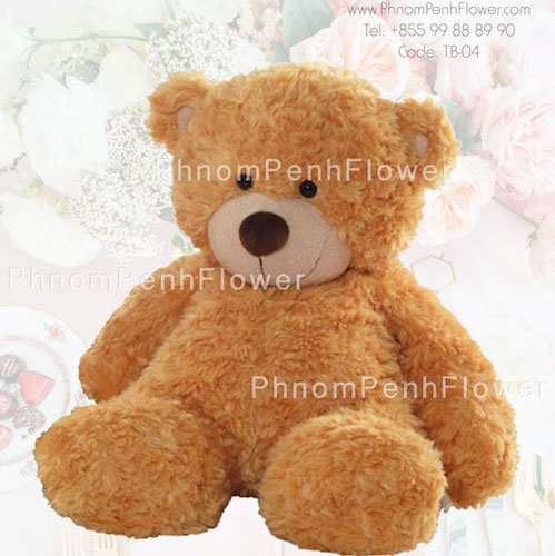 TB-04 - Medium Teddy Bear