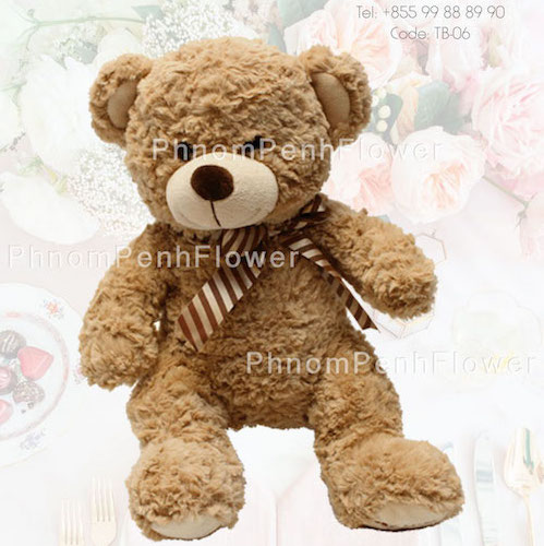 Medium Teddy Bear Gift - Tb-06