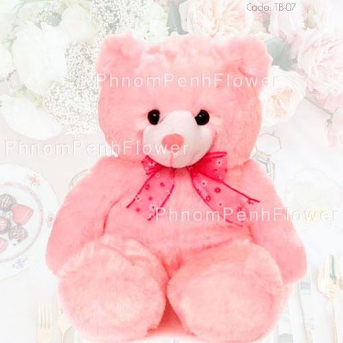 Medium Teddy Bear Gift - Tb-07