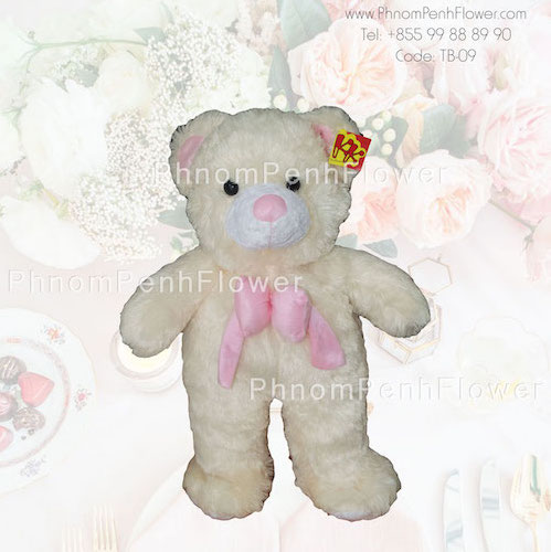 Big Teddy Bear Gift - Tb-09