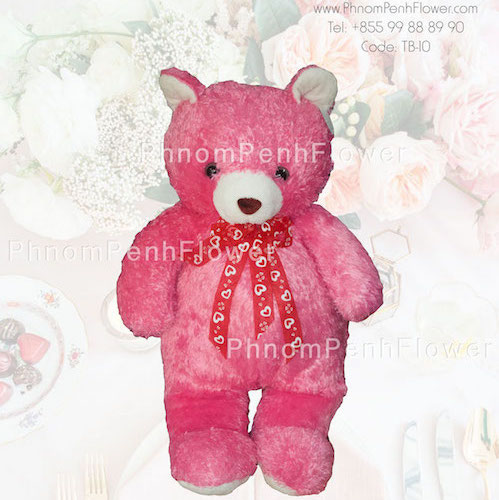 Big Teddy Bear Gift - Tb-10